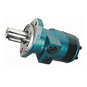 Motore idraulico oleodinamico ante battenti BFT LUX G P935013 00001 230V 5m