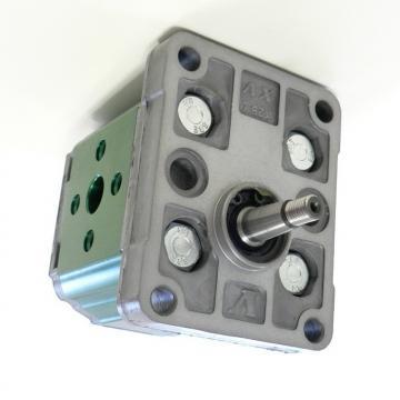 Attuatore oleodinamico Aprimatic TWENTY 270 B 41012 motore idraulico con blocco