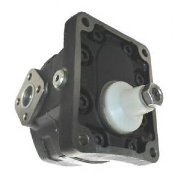 VDS PH 12384/1 Motore Attuatore Oleodinamico Lineare 230V anta 6mt