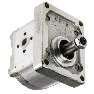 REXROTH Flügelzellenpumpe / Typ: 1PV2V4-27/80RA01VC160A1 / guter Zustand