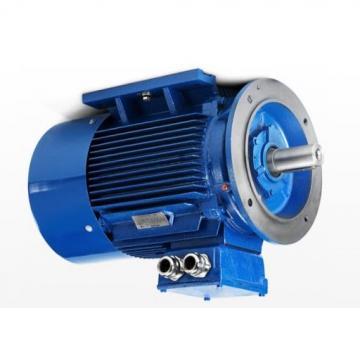 Pompa Centralina Idraulica Per Motore a Benzina Bg 2 Pompe + Frizione d19, 05