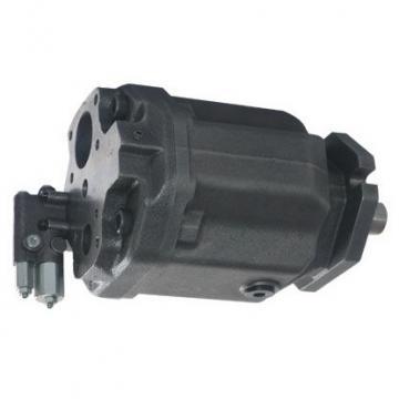 Loncin Motore Diesel Pompa Idraulica Set