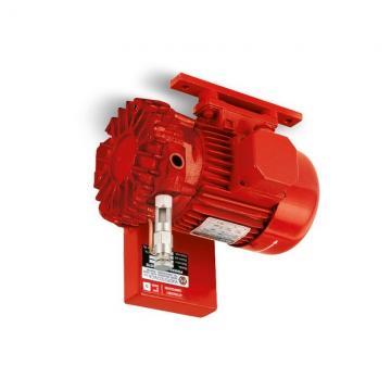 257954A1 nuovo caso 580SL 580SM 580SL SERIE 2 Braccio escavatore POMPA IDRAULICA