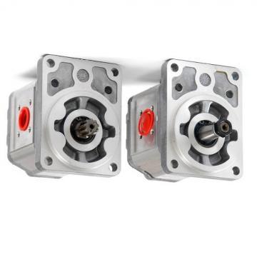 Kit Riparazione Pompa Common Rail Iniezione Diesel Gasolio 0445010097/123/130